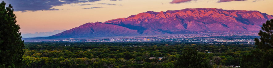 Header Image for ABQhomes